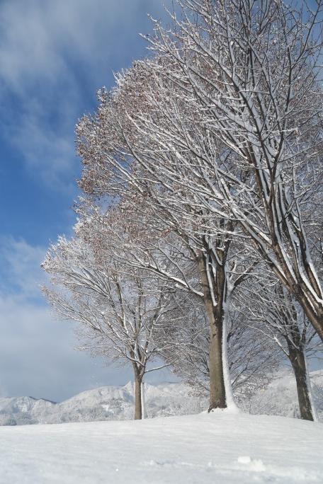 雪景色いい.png