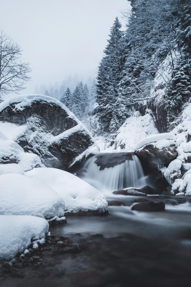 冬の写真5.png
